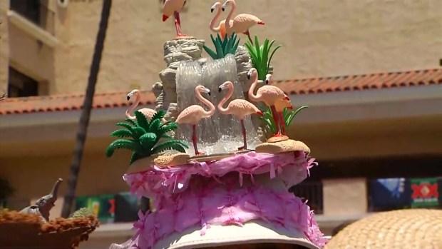 [DGO] Sisters Sport San Diego Zoo Centennial Hats