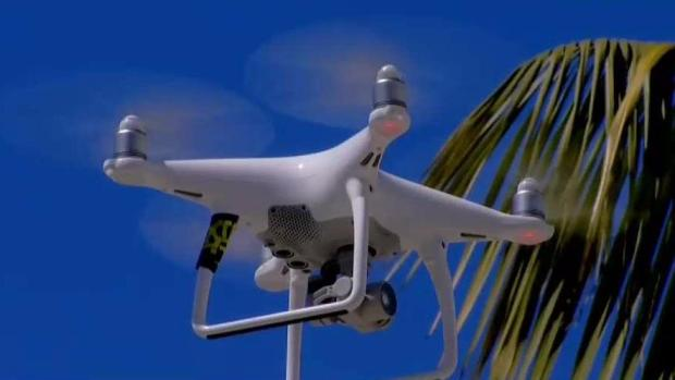 Drone Killers Wanted in Oceanside