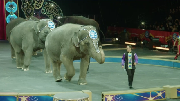[NATL] Ringling Bros. to Phase Out Iconic Elephant Act