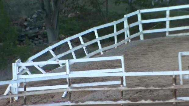 [DGO] HiCaliber Horse Rescue Evicted