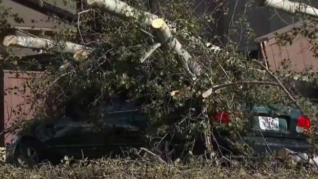 [DGO] High Winds Cause Fire, Falling Trees, and Power Outages