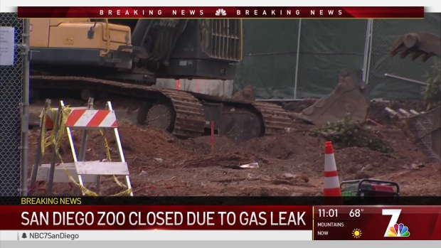 San Diego Zoo, Museums Close Due to Gas Leak