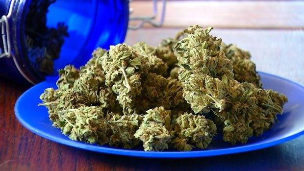 [DGO] Unclear Future for Marijuana Edibles in San Diego