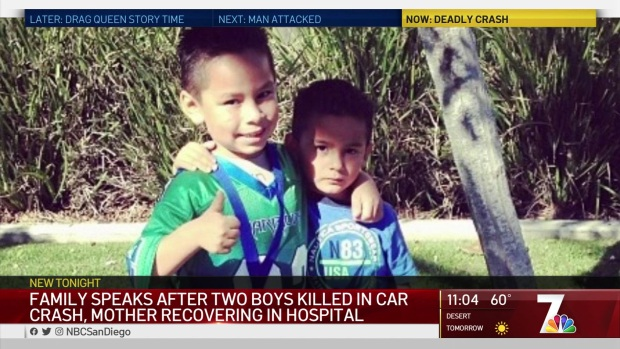 Mother Wakes Up in Hospital, Learns Sons Didn't Survive Crash