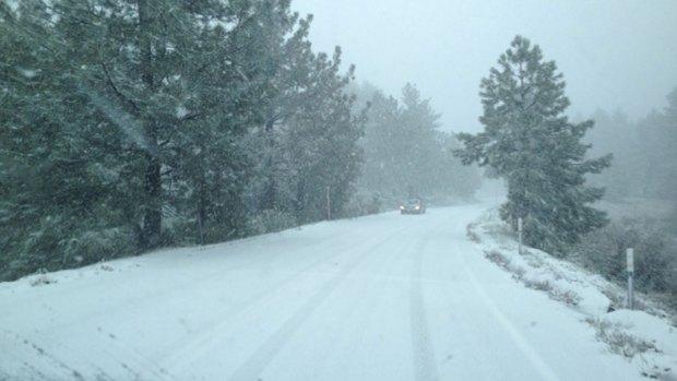 [DGO] May Snow Storm on Mount Laguna
