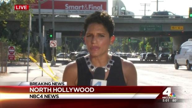 [LA] Gunman Surrenders After Chase, Standoff