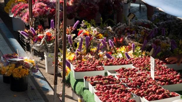 OB Farmers Market Turns 25