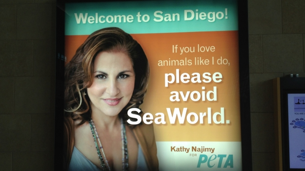 SD Airport Displays Ant-SeaWorld Ad