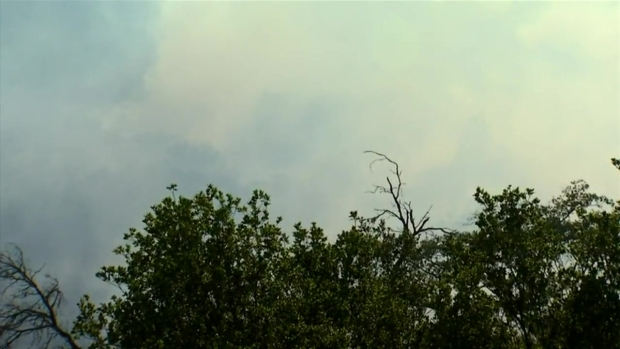 RAW VIDEO: Mandatory Evacuations Ordered, Pala Fire Spreads to 45 Acres