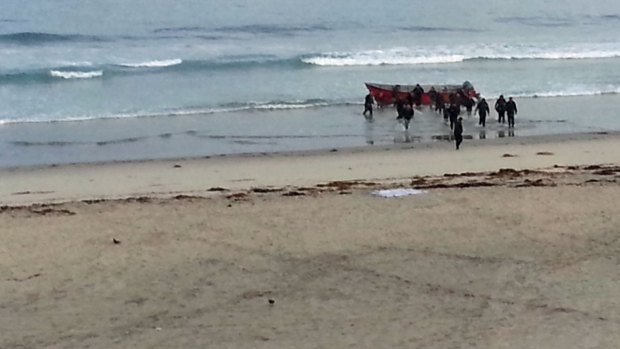 Images: Estimated 20 Run from Panga in Mission Beach