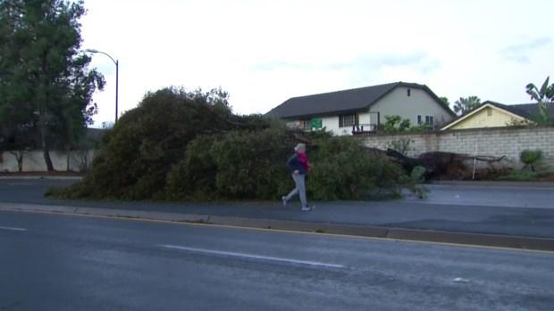 [DGO] Tree Blocks Pomerado Road