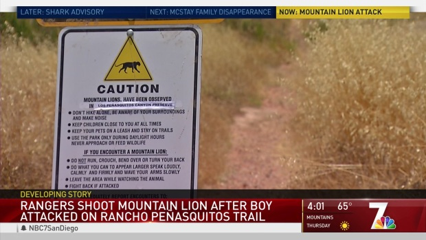 Rangers Shoot Mountain Lion After Attack
