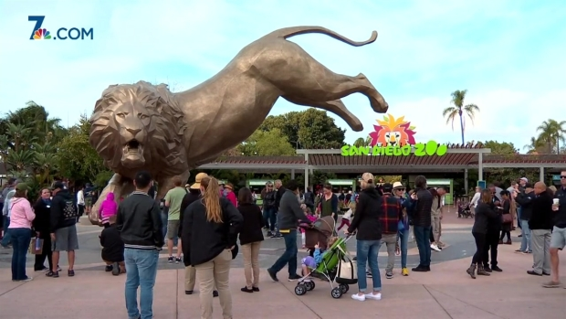[DGO]27-Foot Tall Lion Unveiled in Honor of San Diego Zoo's Inspiration