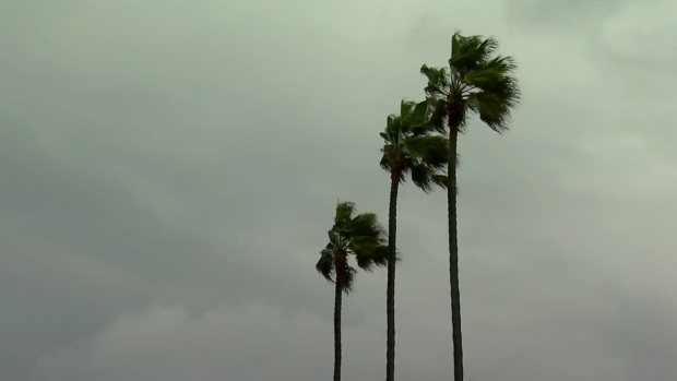 [DGO] Rainy, Windy Weather Hits San Diego