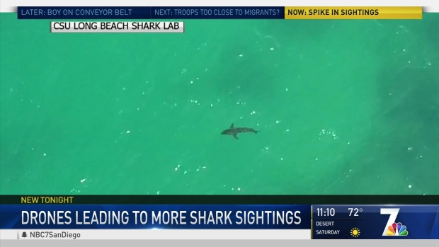 [DGO] Drones Offer New Vantage Point for Shark Sightings Off San Diego Coast