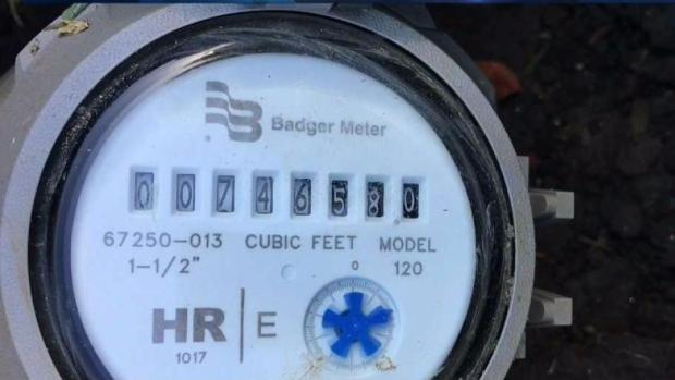 Flood of Distrust Part III - Trust In: Smart Meter Program