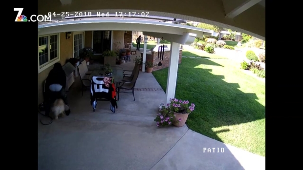 [DGO] Vista Burglars Caught on Camera