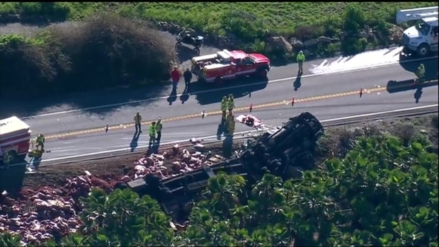 1 Dead, 1 Rescued After Big Rig Rollover