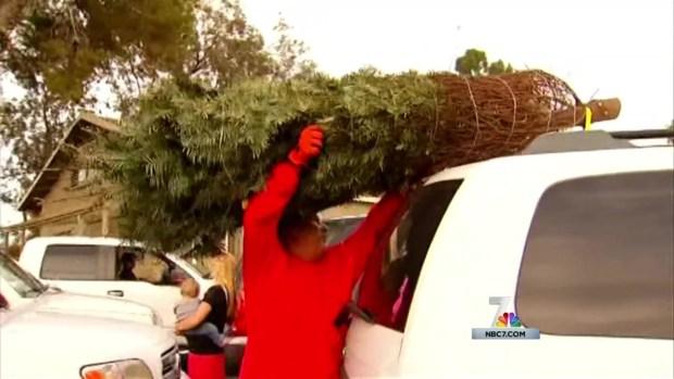 [DGO] Military Families Get Free Christmas Trees