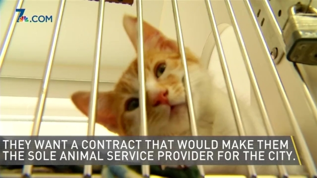[DGO] Future of San Diego Animal Services Uncertain