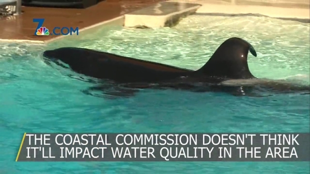 [DGO] Sea World Could Be Getting A New Roller Coaster