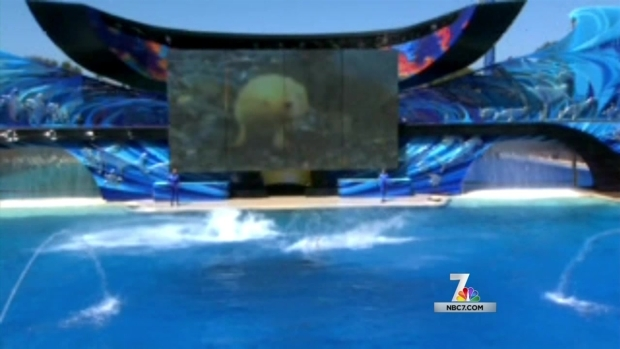 [DGO] Bill Would Ban Killer Whale Shows at SeaWorld