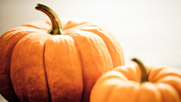 Pumpkin Fever: Healthy or Not?