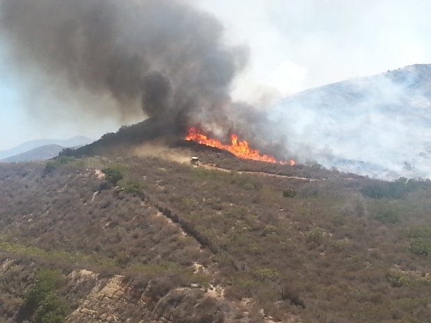 [G] East County Brush Fire Scorches 5 Acres