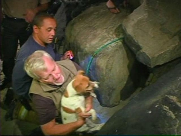 [DGO] Dog Rescued From La Jolla Rocks