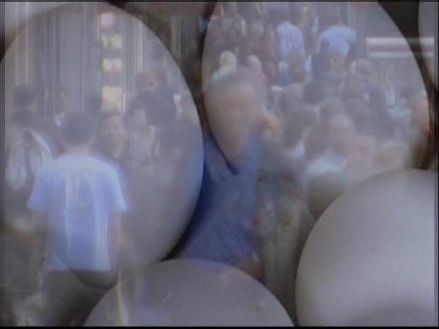 [DGO] Massive Egg Recall Ordered