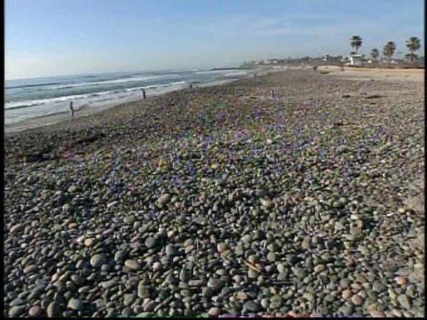 [DGO] State to Investigate Carlsbad Cancer Concerns