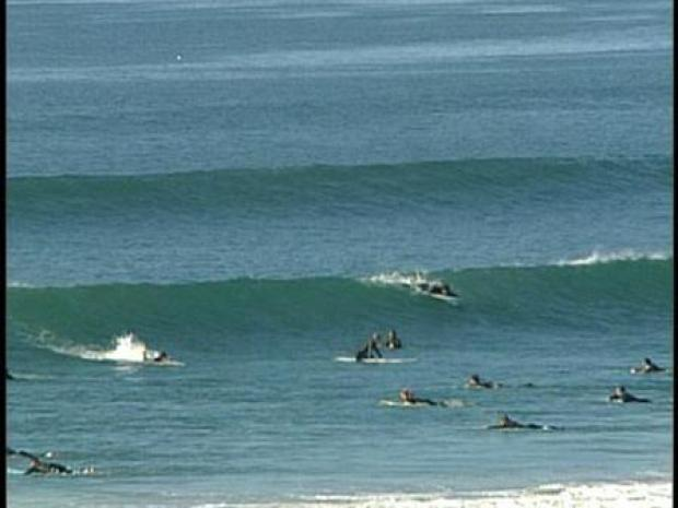 [DGO] Surf's Up!