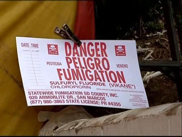"[DGO] ""Thieves Target Tented Homes"""