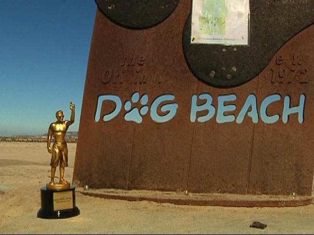 [DGO] Best Dog Beach In Town