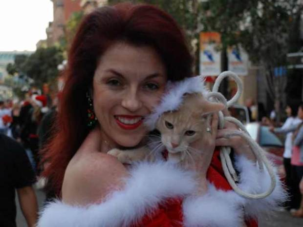 Holiday Pet Parade