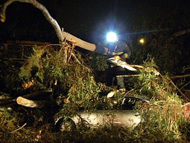 Storm Damage - December 2009