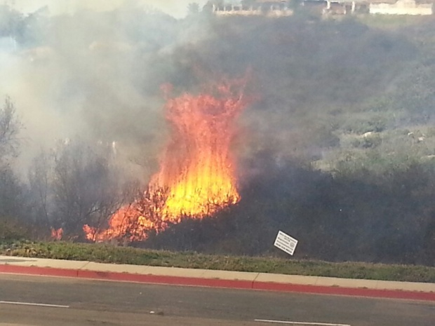 Images of University City Fire