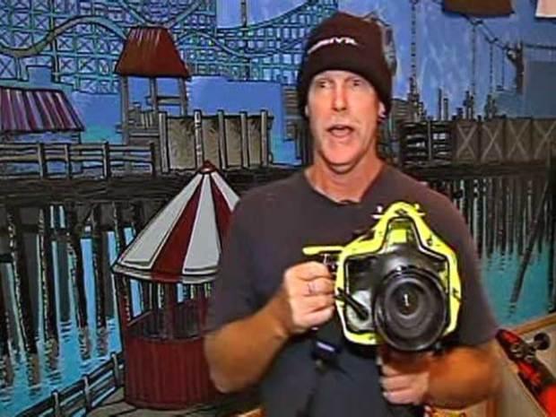 Photographer Lands Sharks Pics