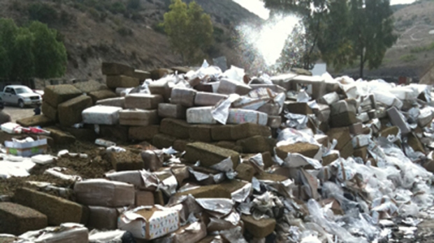 Images: 28 Tons of Drugs Burn