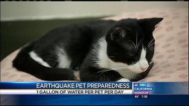 [LA] Preparing Pets For an Earthquake