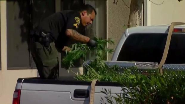 DEA Raids Kearny Mesa Business