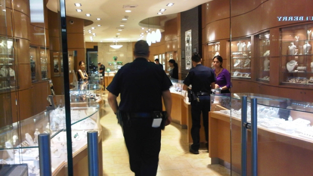 [DGO] Armed Man Robs Fashion Valley Jewelry Store