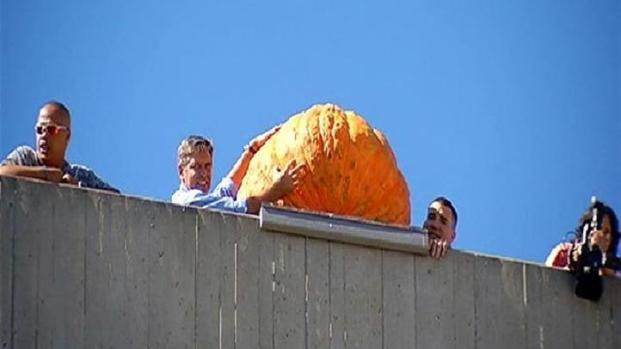 [DGO] 400-Pound Pumpkin Dropped from High-Rise
