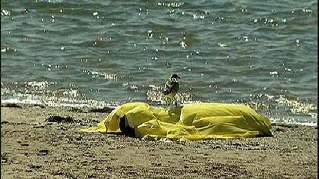 [DGO] Body Found in Mission Bay