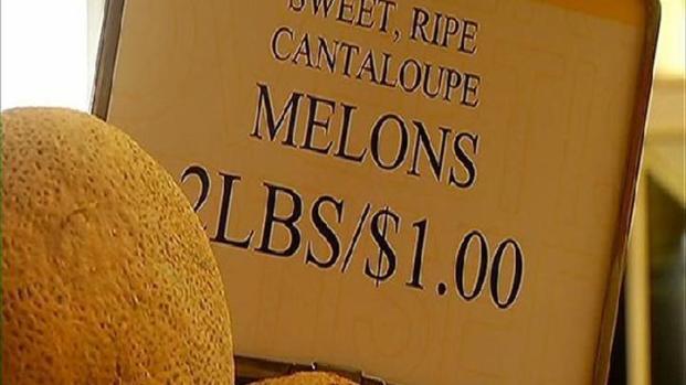 [DGO] Cantaloupe Sales Drop After Scare