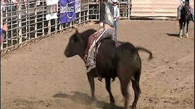 [DGO] Cowboy Up at the Lakeside Rodeo