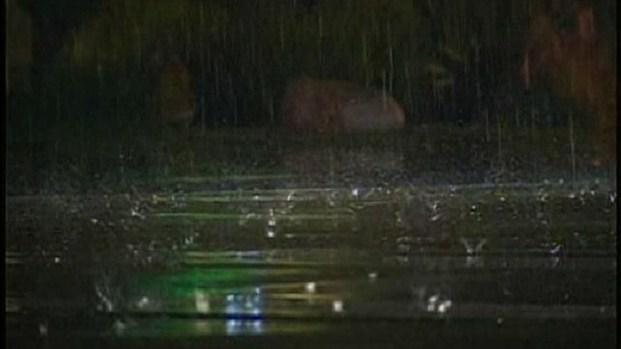 [DGO] Fall Storm Blasts San Diego