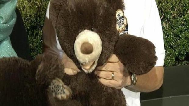 [DGO] Rady's Teddy Bear Drive