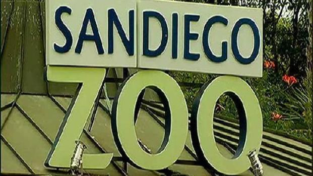 [DGO] San Diego Zoo Fire Disturbs Visitors