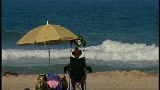 [DGO] Shark Sightings in Mission Beach
